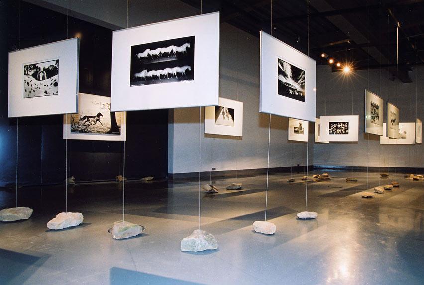 Ausstellung-Muenster